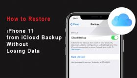 restore iphone 11